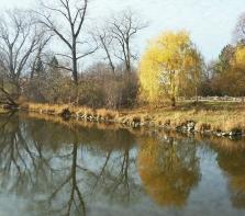 L\'ÎLe de la Visitation, un endroit incontournable, pour ceux qui aiment la nature, la marche, bref la campagne en ville